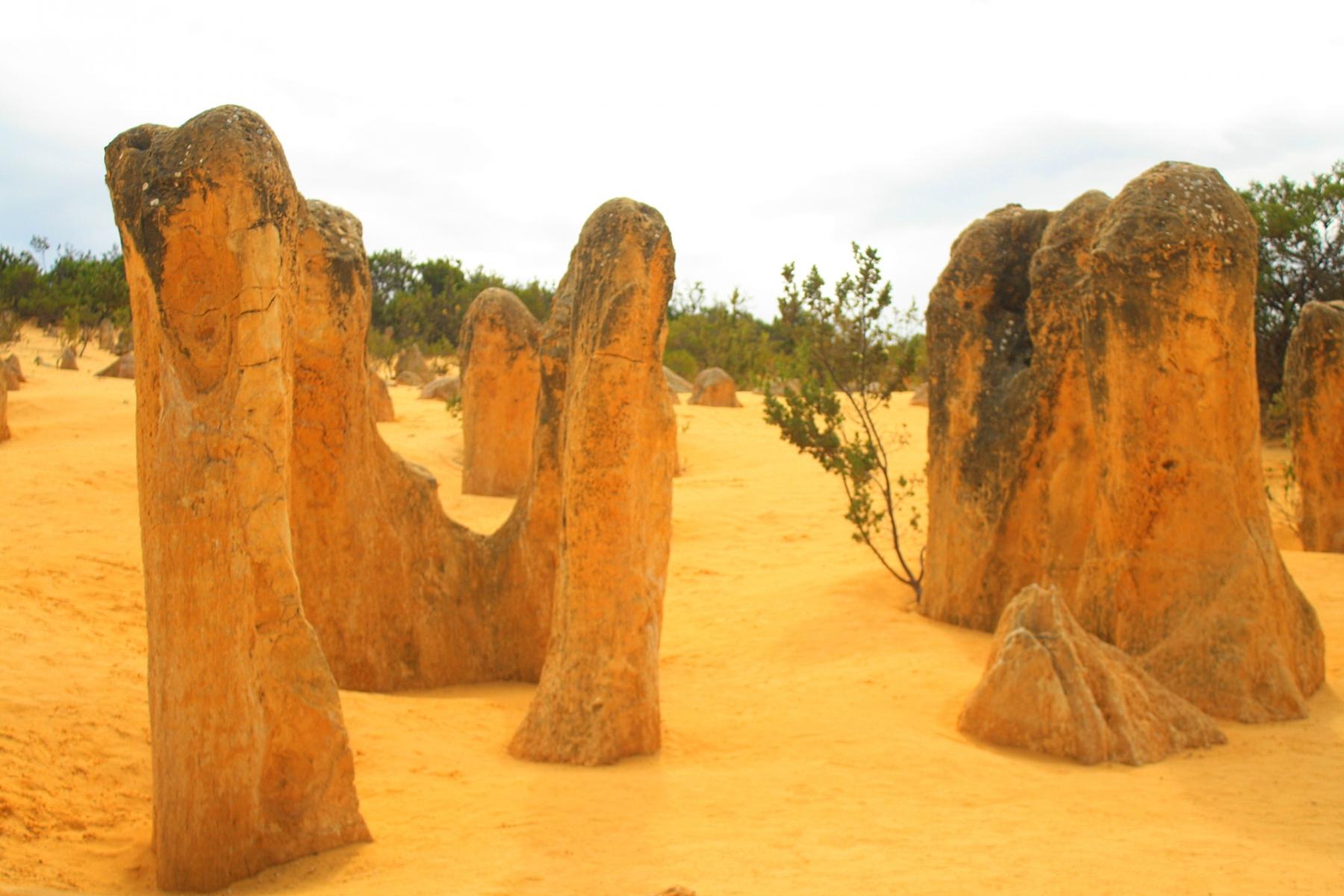 The-Pinnacles-Nambung-National-Park