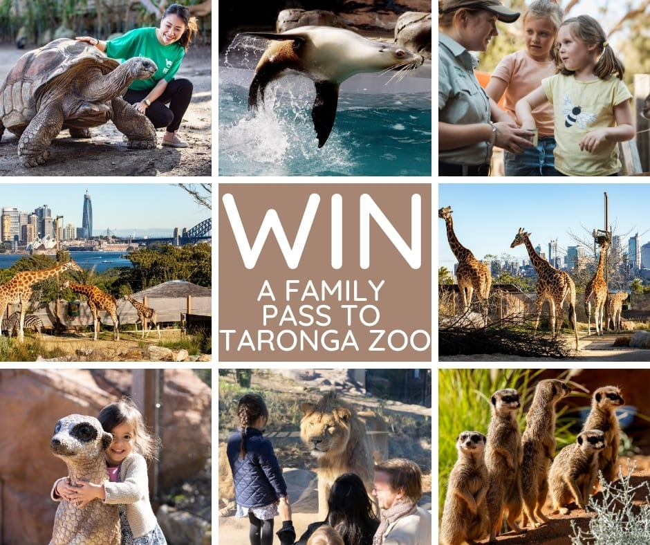 Taronga-Competition.jpg